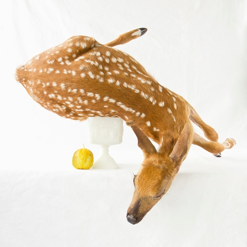 DeerLemonCucumber
